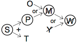LSAT PrepTest 70, Game 2, Question 9, Diagram 1